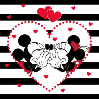 Obliečka na vankúšik Mickey a Minnie stripes micro 40/40